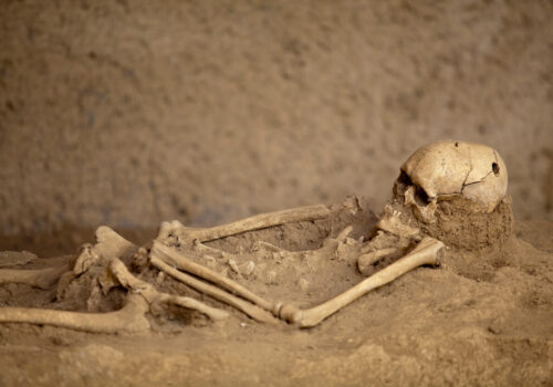 Los huesos como fuente de información Cómo se puede identificar un individuo a partir de las estructuras óseas